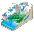 Water cycle - Hendrik Gheerardyn
