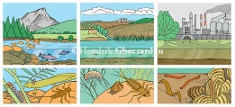 Scheme about bioindicators in aquatic ecosystems, published in magazine Wapiti (October 2015)