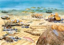 Borkumse stenen, published in book In de diepte