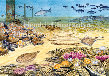 Future of the North Sea, published in book In de diepte