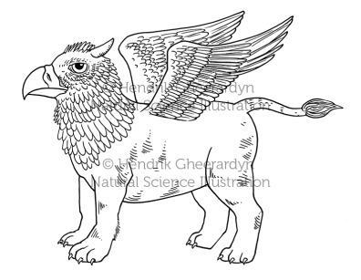 Griffon cub - published in children book (Uitgeverij De Fontein)