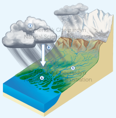 Hydrological cycle in Bangladesh